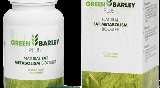 2035836539-Green-Barley-Plus.png